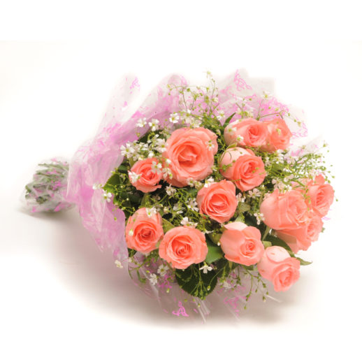 12 Baby Pink Roses