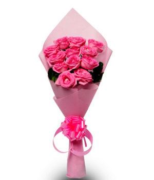 12 Pink Beauty Roses