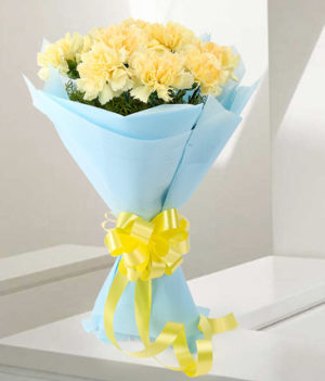 12 Yellow Carnations