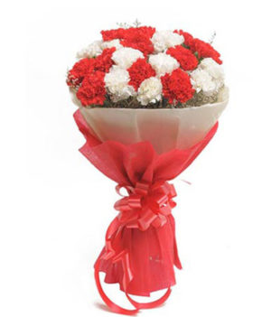 20 Red and White Carnations
