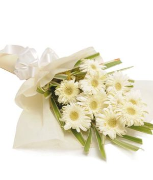 8 White Colored Gerberas