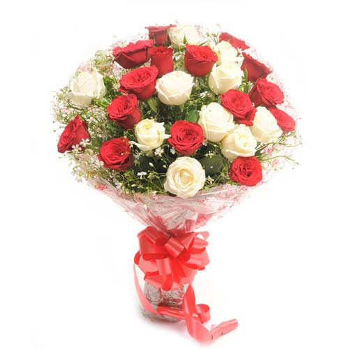 Bunch of 30 Red and White Roses