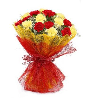 Multi Colored 15 Carnations